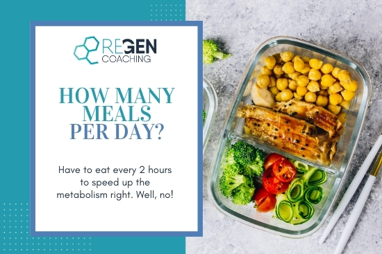 How many meals per day