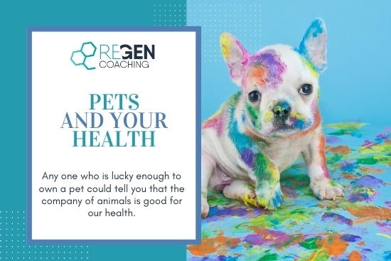 Pets and your health